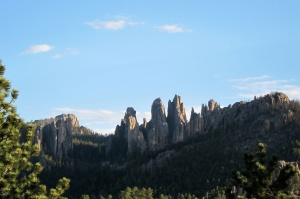 Cathedral Spires along the Needles Highway